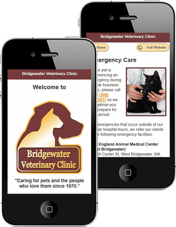 veterinary website mobile