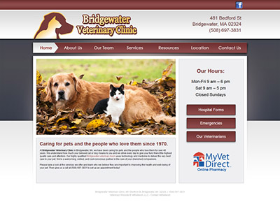veterinary clinic website design