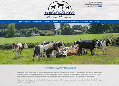custom veterinary websites