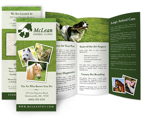 affordable veterinary brochure