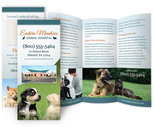veterinary hospital brochure