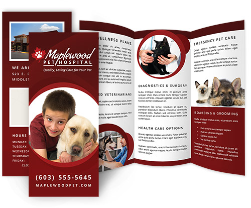 veterinary practice brochures